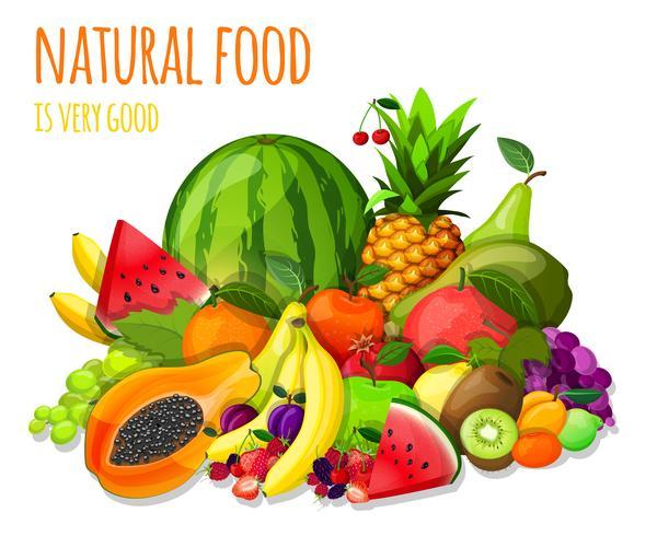 Fruit stelt het stilleven in vector