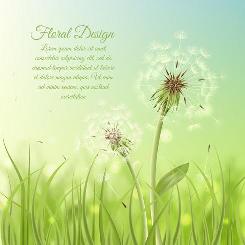 Bloemenontwerpaffiche van paardebloem vector