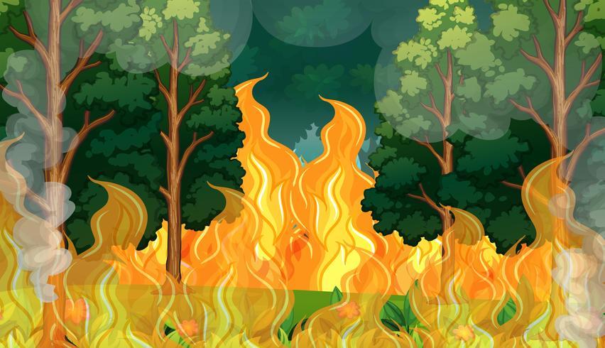 Een bosvuurbrandramp vector