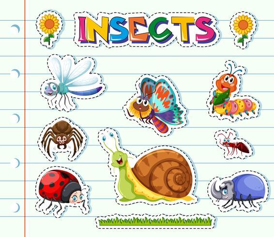 Stickerontwerp met verschillende soorten insecten vector