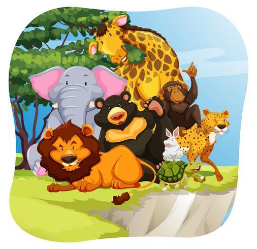 dieren in het wild vector