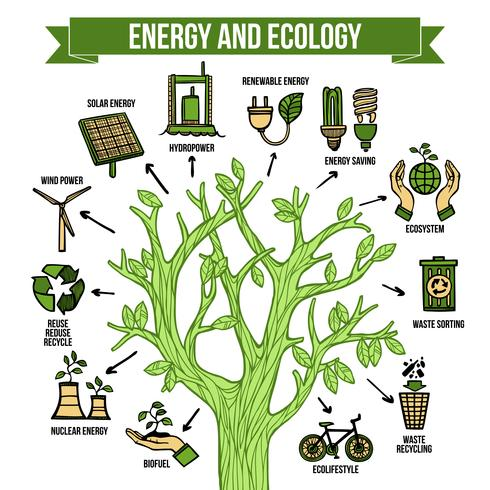 Groene energie ecologische infographic lay-out poster vector