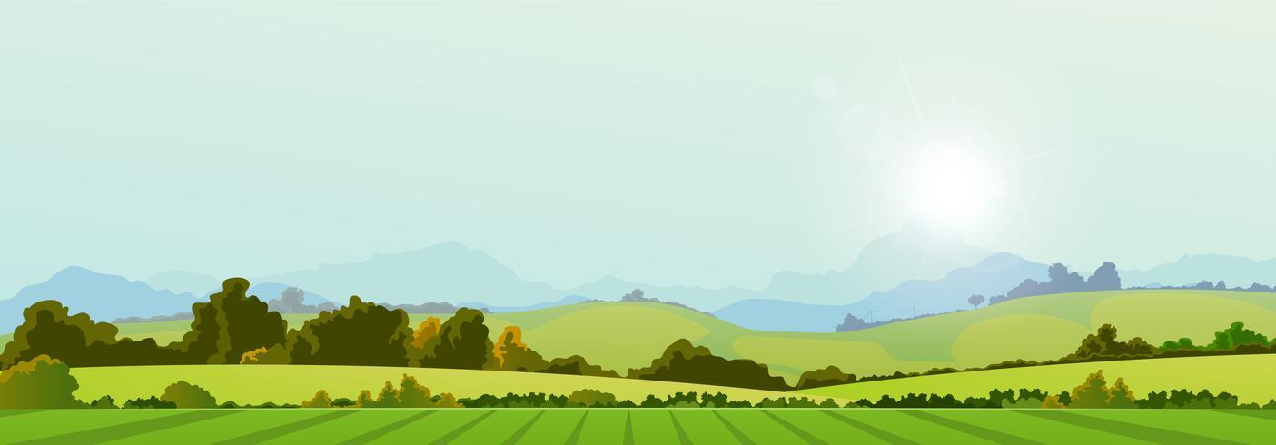 Zomer seizoen land banner vector