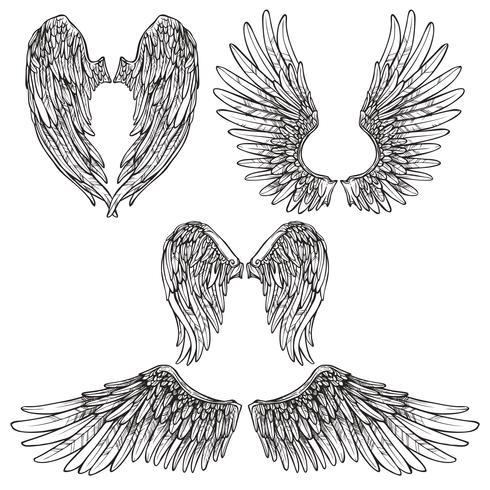 vleugels schets set vector