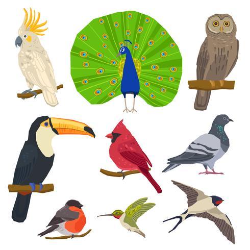 Vogel getrokken pictogrammenset vector