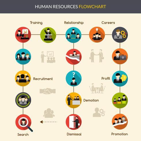 Stroomdiagram van Human Resources vector
