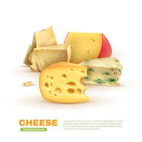 Kleurrijke kaas sjabloon vector