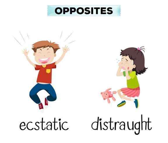 Engels tegenovergesteld woord van extatisch en radeloos vector