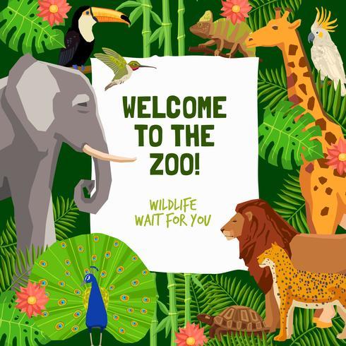 Kleurrijke affiche met uitnodiging om dierentuin te bezoeken vector