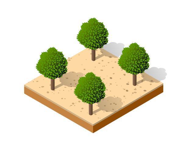 Isometrische 3D-park vector