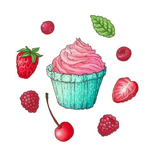 Stel cupcake frambozen aardbeikers, hand tekenen. Vector illustratie