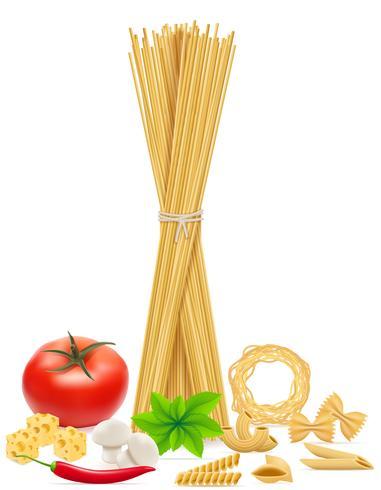 pasta met groenten vectorillustratie vector