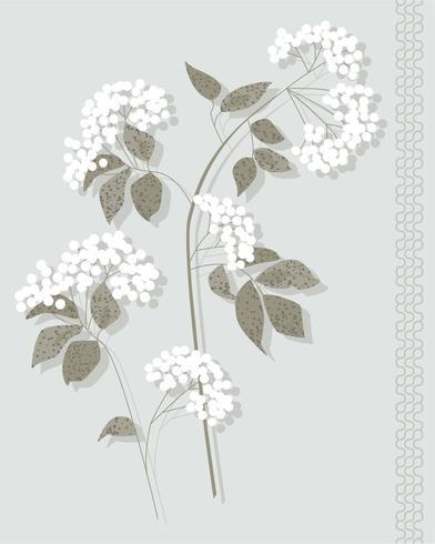 witte botanische vector grafische plaatsing