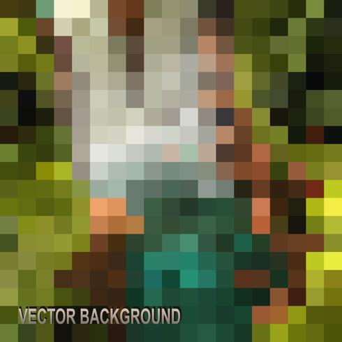 Het geometrische patroon vector