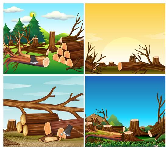 Vier scènes van ontbossing vector