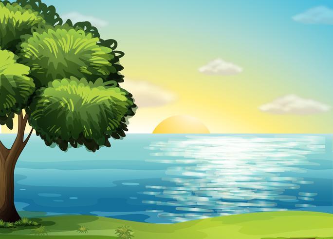 Een uitzicht op de oceaan vector