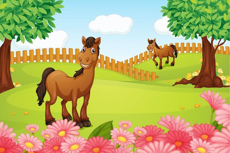 Paarden op een veld vector