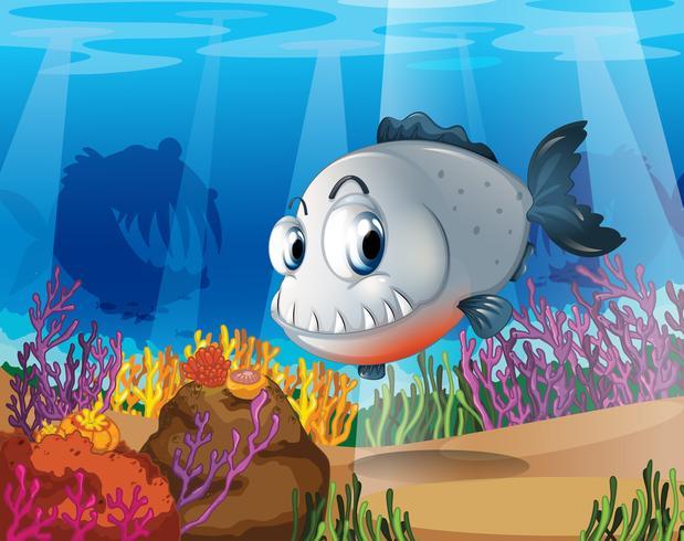 Een piranha bij de koraalriffen vector