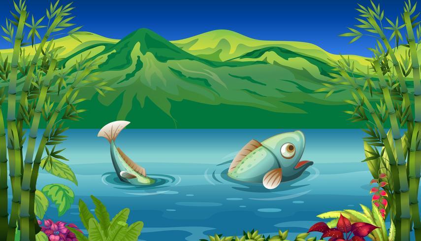 Een grote vis aan het meer vector