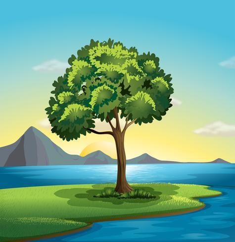 Een boom in de buurt van de oceaan vector