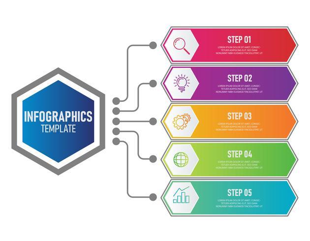 Zakelijke infographics sjabloon vector
