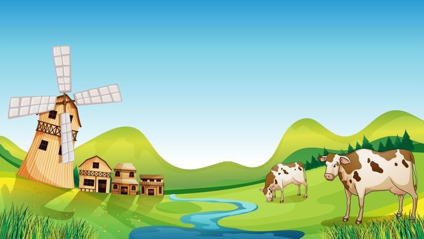 Een boerderij met een schuur en koeien vector
