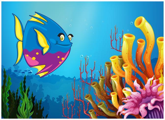 Een onderwatermening met een grote vis en mooie koraalriffen vector