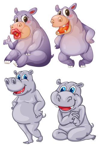 Vier nijlpaarden vector