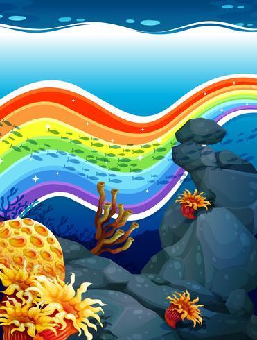 Regenboog onder water vector