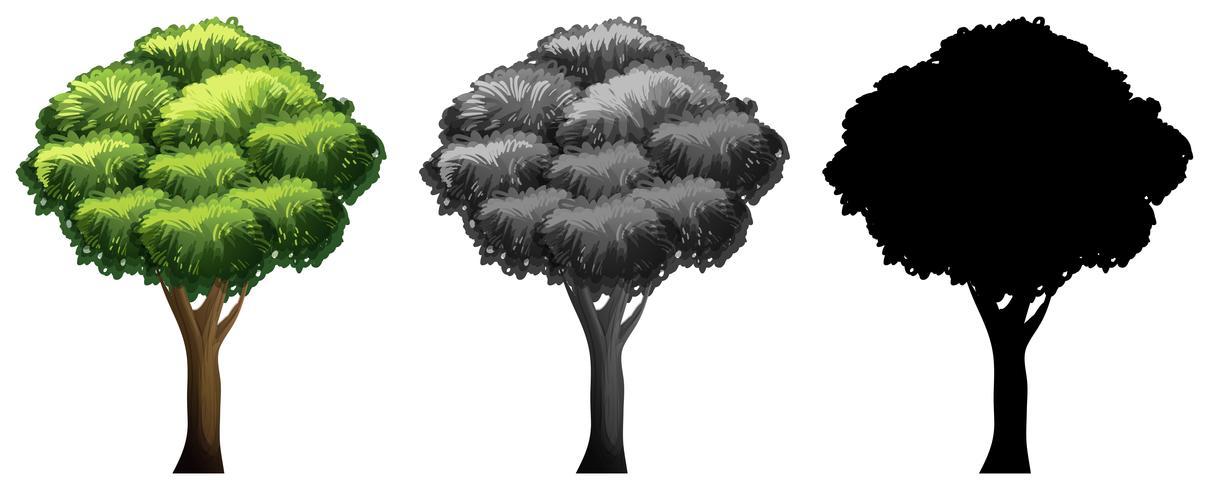 Set van verschillende boom ontwerp vector