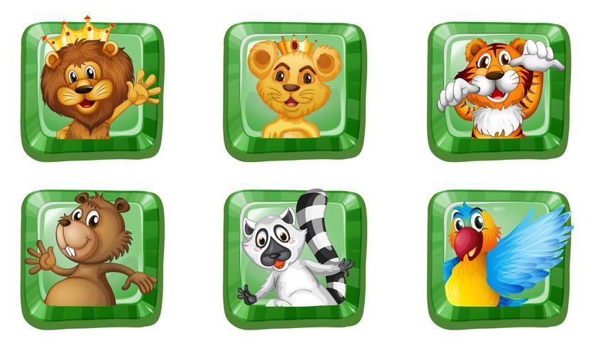 Wilde dieren op vierkante knoppen vector