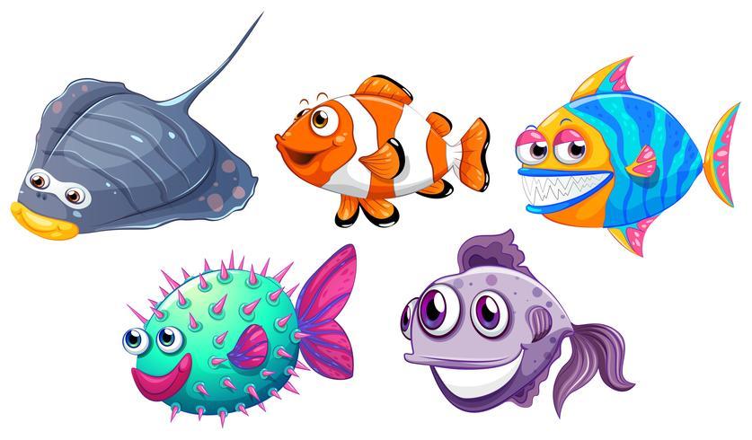 Vijf verschillende vissen vector