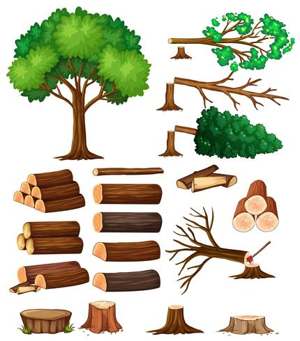 Bomen en boomstronkbomen vector