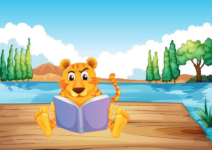 Een serieuze tijger die een boek leest op de duikplank vector