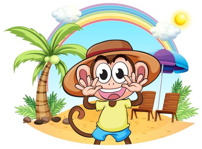 Een aap op het strand vector