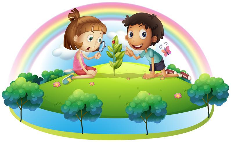 Een meisje en een jongen die de plant bekijken vector