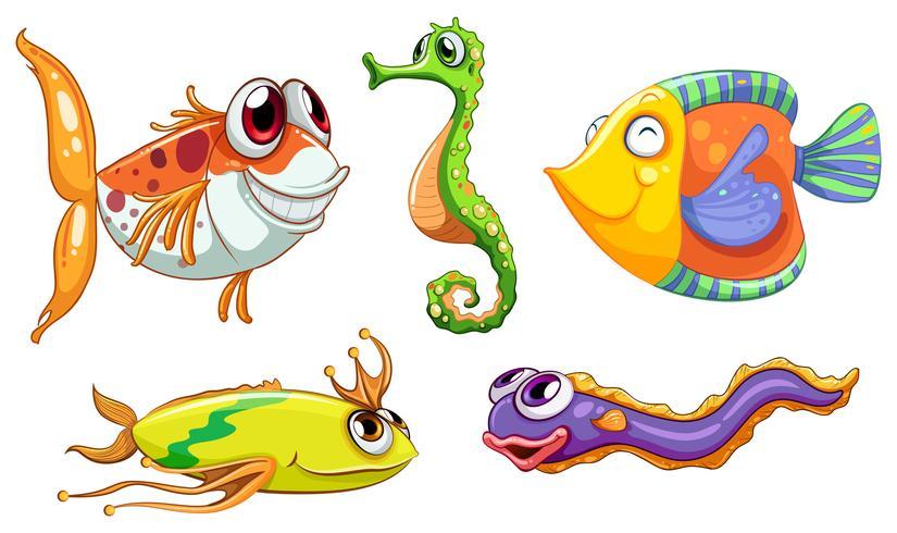 Vijf zeedieren vector