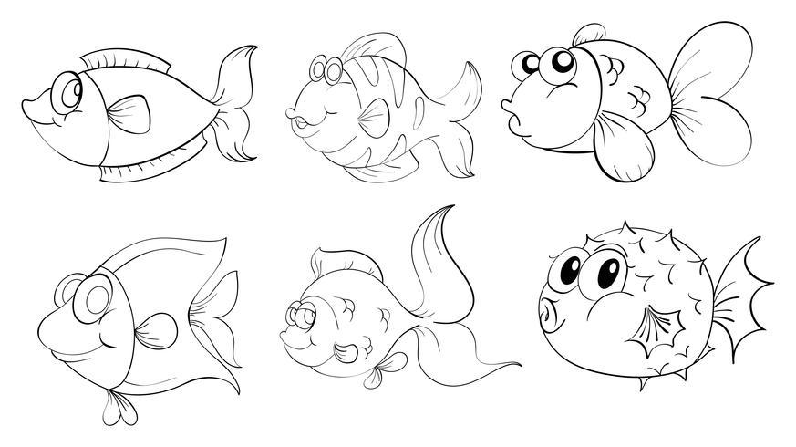 Verschillende vissen in een krabbelontwerp vector
