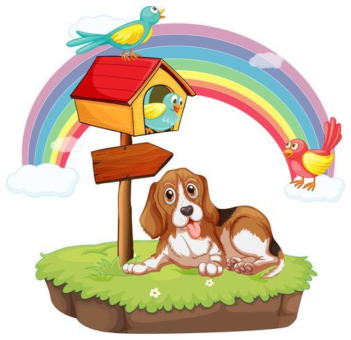 Hond en vogels vector