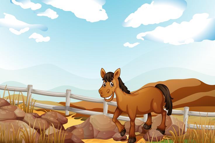 Een paard in de buurt van de rotsen vector