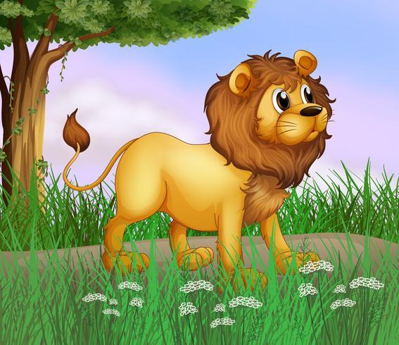 Een grote leeuw op de weg vector