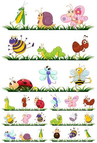Verschillende soorten insecten op gras vector