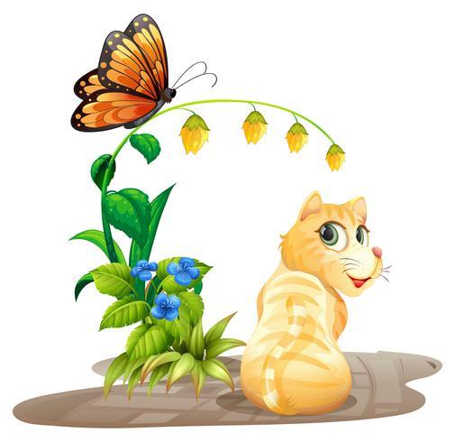 Kat en vlinder vector