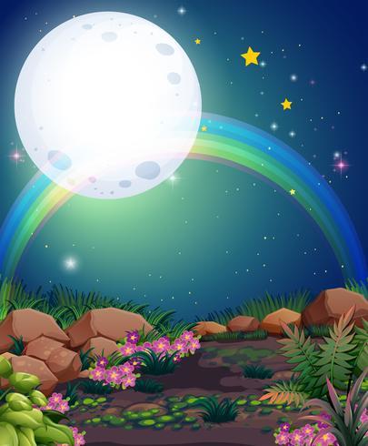 Een regenboog tijdens de nacht vector