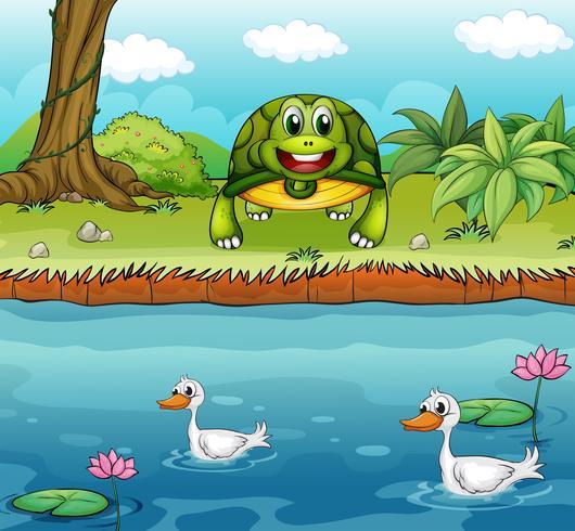 Een schildpad naast de rivier met eenden vector