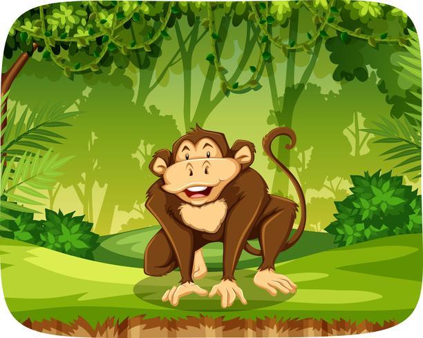 Een aap in de jungle vector