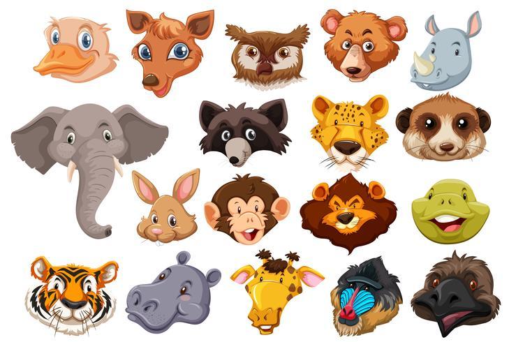 Set van wilde dieren hoofd vector