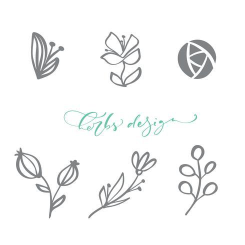 Set van vector Scandinavische bloemen Logo. Hand getrokken organische cosmetica van de pictogrambloem, bloemisthuwelijk, huisdecor. Kruiden Ontwerptekst