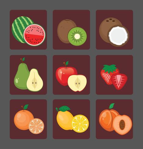 Verzameling van hele vruchten en fruit helften vector