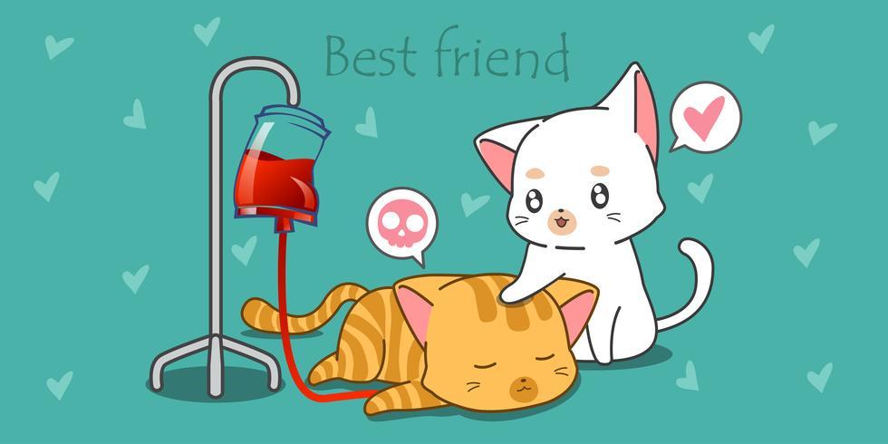 Witte kat zorgt voor zijn zieke vriend. vector